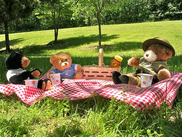 5 Ideas para fiestas infantiles en el jardín